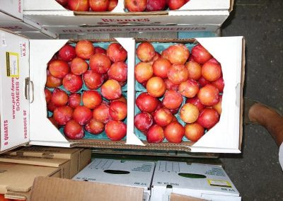 Leola Produce Auction - Red Apples