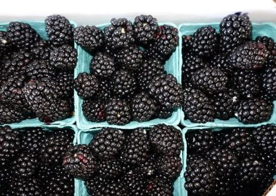Leola Produce Auction - Berries