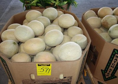 Leola Produce Auction - Cantaloupe