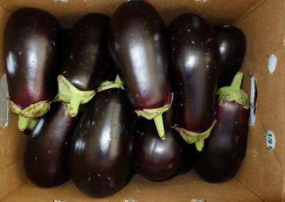 Leola Produce Auction - Eggplants