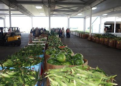 Late Summer at Leola Produce Auction