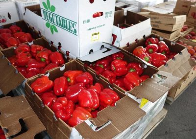 Leola Produce Auction - Peppers