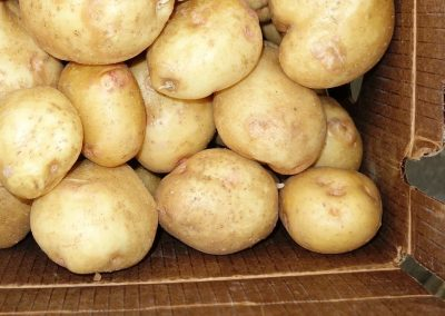 Leola Produce Auction - Potatoes