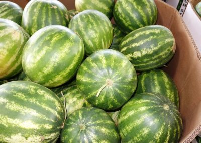 Leola Produce Auction - Watermelons