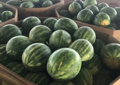 Leola Produce Auction - Watermelon